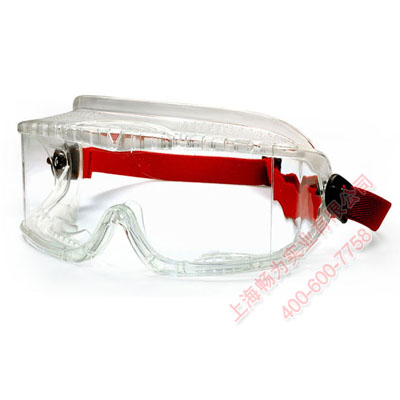 代尔塔101103 透明聚碳酸酯防化护目镜