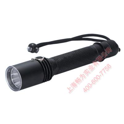 防爆强光手电筒bzc6032-价格|材质|规格|厂家-常用灯